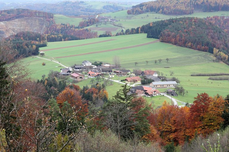 Naas Dorf