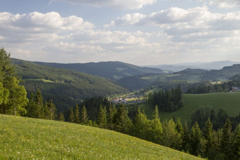 Panorama Rettenegg