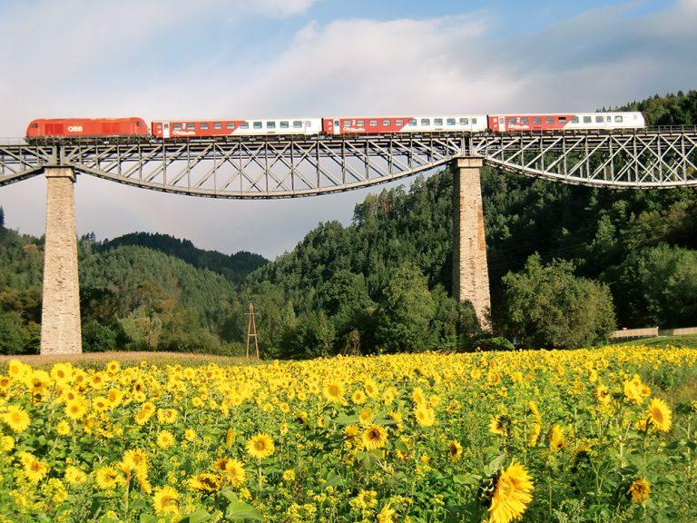 Zeilbrücke in Rohrbach